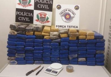 Quatro homens são presos em operação conjunta que apreende grande quantidade de maconha em Paraguaçu