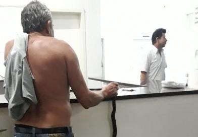 Idoso é picado por jararaca e leva cobra viva na mão até hospital de RO
