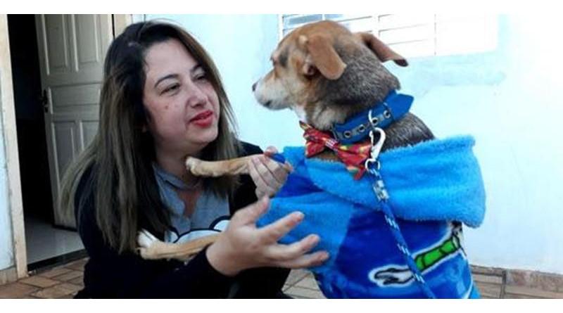 Depois de quase uma semana, mulher reencontra cão que perdeu após capotar carro no interior de SP