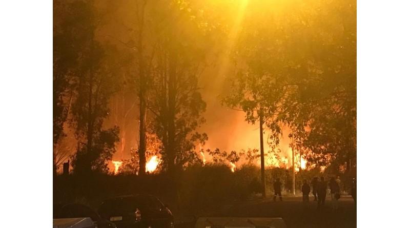 Bombeiros levam oito horas para controlar incêndio em mata de Lençóis Paulista
