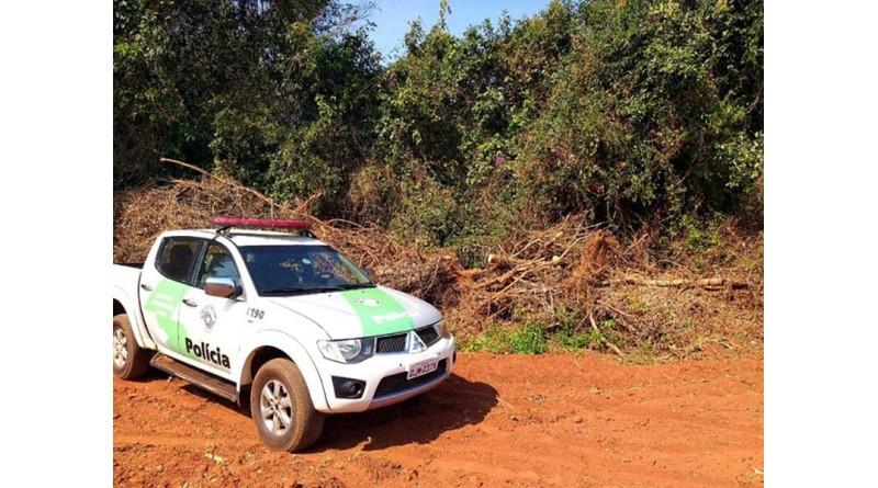Fiscalização constata devastação de árvores nativas e multa dono de sítio em Iepê