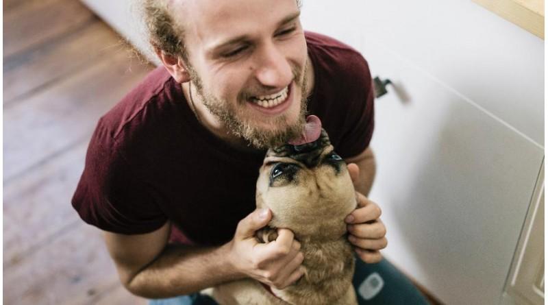 Homem morre ao contrair infecção rara através de lambida de cachorro