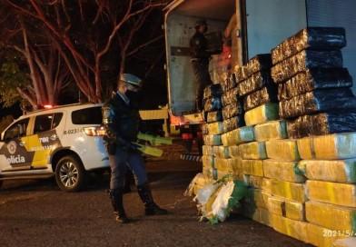 Polícia Rodoviária apreende maconha escondida na carga de frango congelado em Palmital